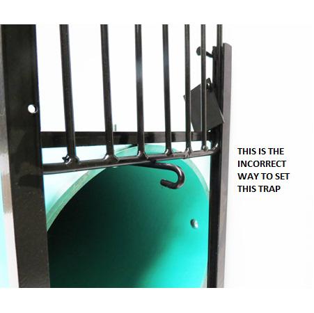 Live Trap Tuff Trap Live Cage Trap Cage Trap The Snare Shop