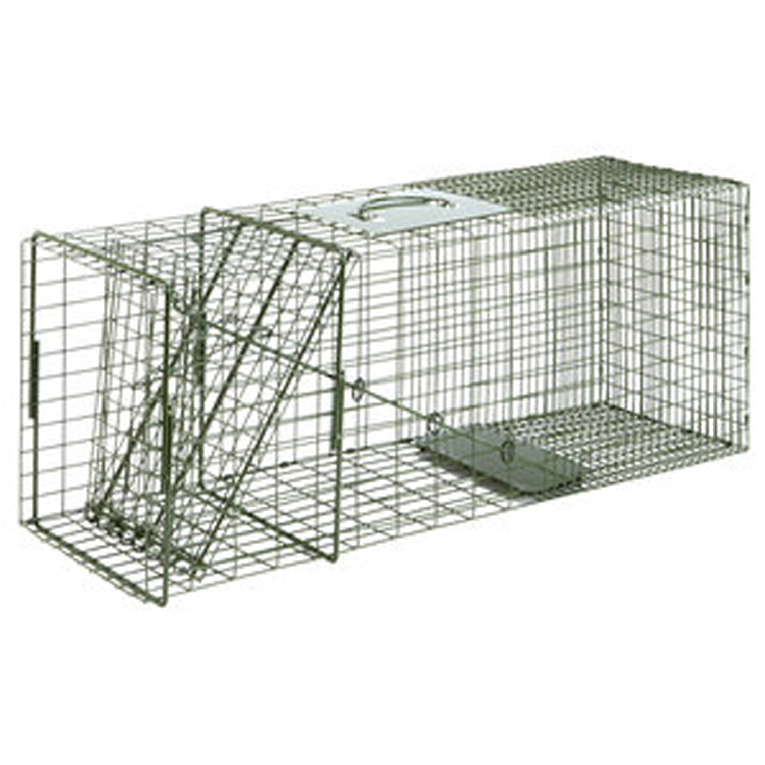 Duke Large Cage Trap - OUT OF STOCK