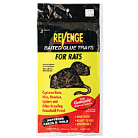 RAT GLUE TRAP - 2 PACK