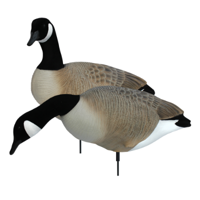 White Rock Full Body Canada Goose Blind Door Decoys