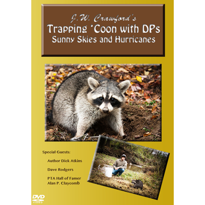 Trapping Raccoon With DP's - Sunny Skies & Hurricanes - ON CLEARANCE
