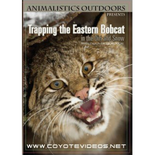 Animalistics Trapping The Eastern Bobcat