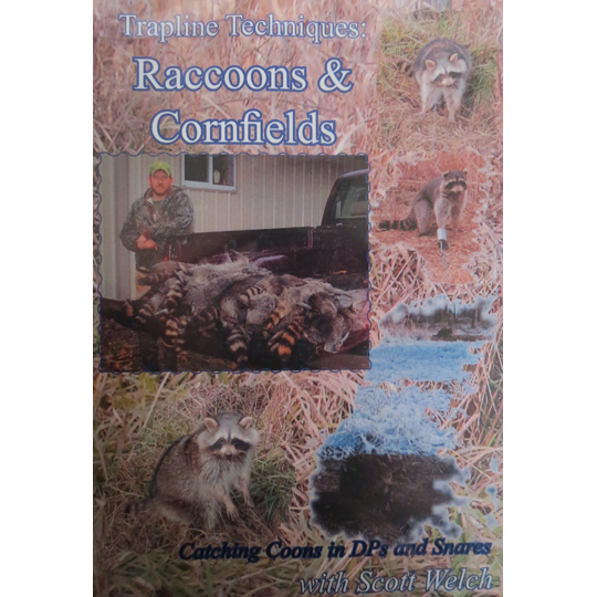 RACCOONS & CORNFIELDS - CATCHING COONS IN DP'S & SNARES
