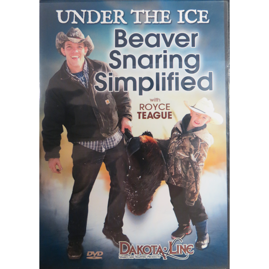 Under The Ice Beaver Snaring Simplified