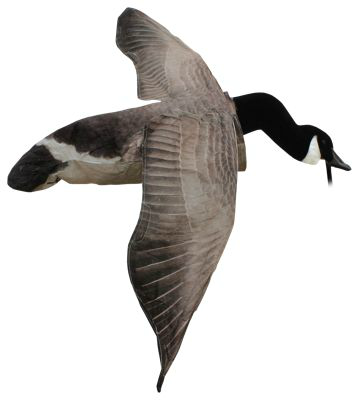 White Rock Deck Boss Flying Canada Goose Decoy