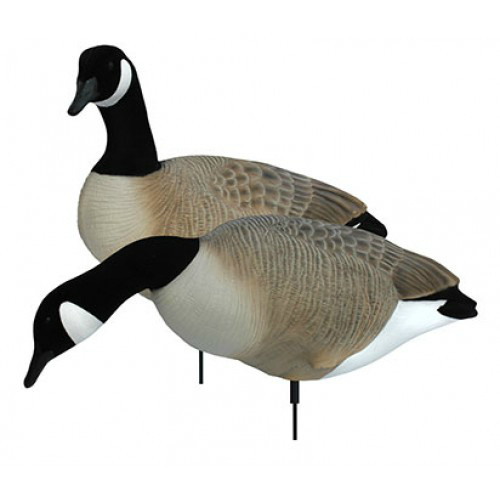 White Rock Canada Goose Collapsible Full Body - 6 Pack