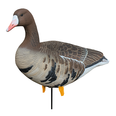White Rock Specklebelly Collapisble Full Body Decoys