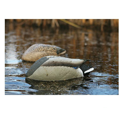 Greenhead Gear Pro-Grade Life Size Mallard No-Head Feeders