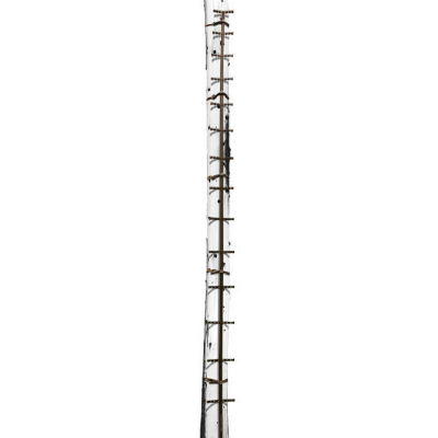 Hawk Traction 20' Climbing Stick