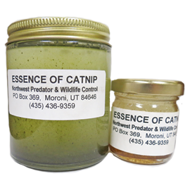 ESSENCE OF CATNIP