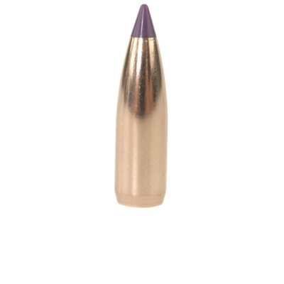 Nosler Ballistic Varmint Rifle Bullets - .243/6mm 70 Gr - 1 In Stock