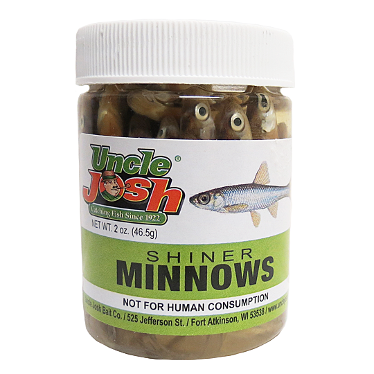 UNCLE JOSH SHINER MINNOWS