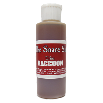 Raccoon Urine